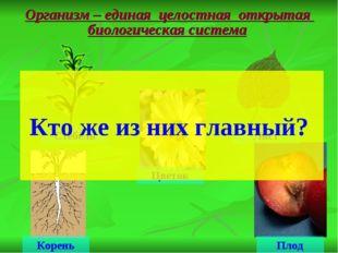 Организм – единая целостная открытая биологическая система Стебель Лист Корен