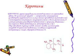 Каротины КАРОТИНЫ, группа природных пигментов желтого или оранжевого цвета. П