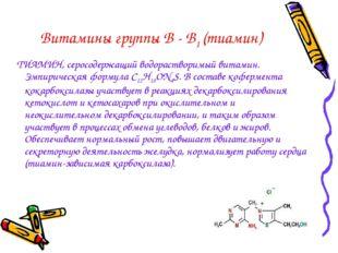Витамины группы В - В1 (тиамин) ТИАМИН, серосодержащий водорастворимый витами