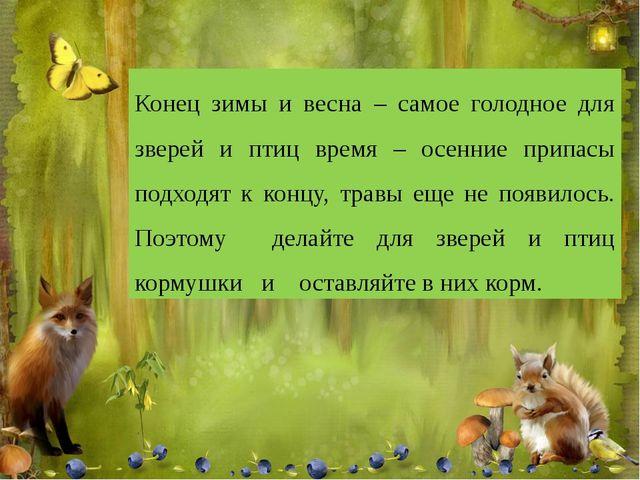 Конец зимы и весна – самое голодное для зверей и птиц время – осенние припас...