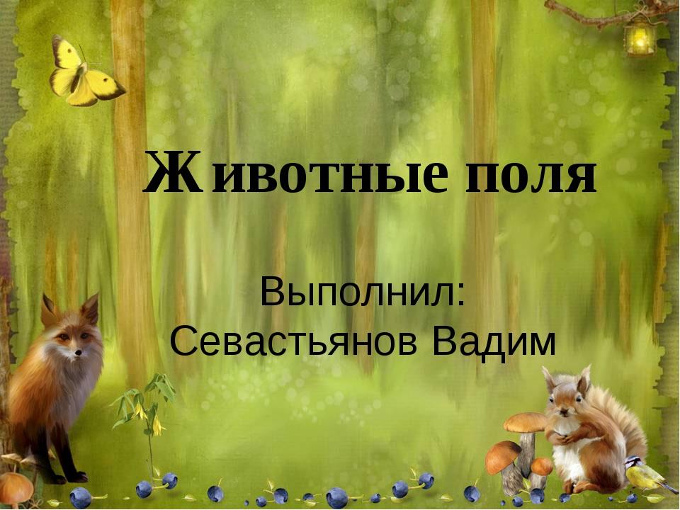 Выполнил: Севастьянов Вадим Животные поля