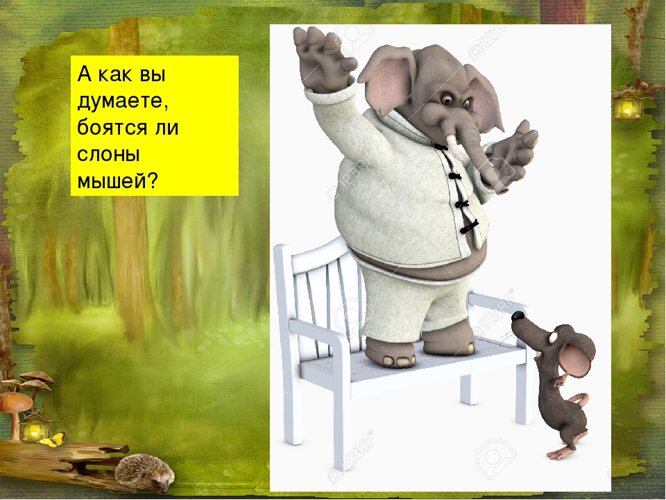 А как вы думаете, боятся ли слоны мышей?