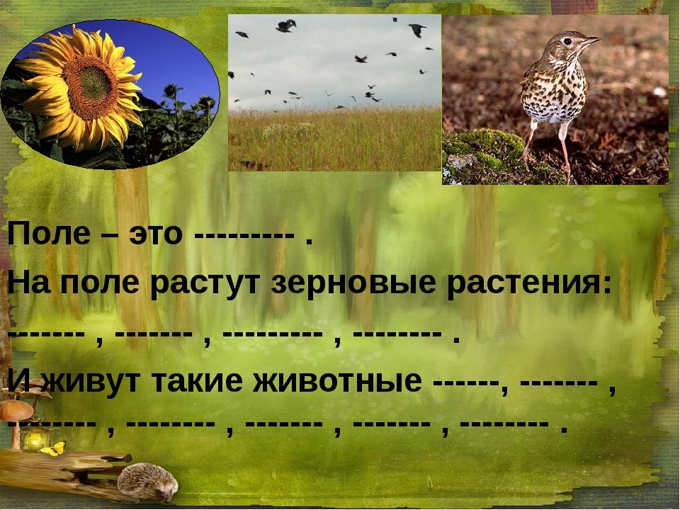 Поле – это --------- . На поле растут зерновые растения: ------- , ------- ,...
