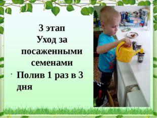 3 этап Уход за посаженными семенами Полив 1 раз в 3 дня