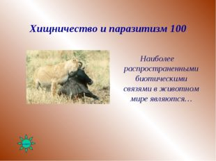 Хищничество и паразитизм 100 Наиболее распространенными биотическими связями