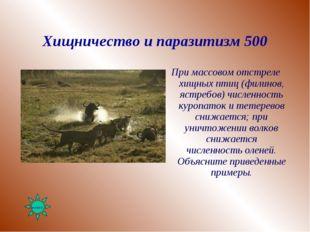 Хищничество и паразитизм 500 При массовом отстреле хищных птиц (филинов, ястр