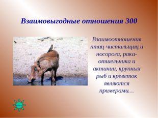 Взаимовыгодные отношения 300 Взаимоотношения птиц-чистильщиц и носорога, рака