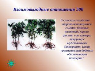 Взаимовыгодные отношения 500 В сельском хозяйстве широко используется симбиоз