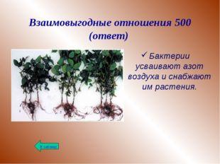 Взаимовыгодные отношения 500 (ответ) Бактерии усваивают азот воздуха и снабжа