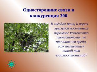 Односторонние связи и конкуренция 300 В гнёздах птиц и норах грызунов поселяе