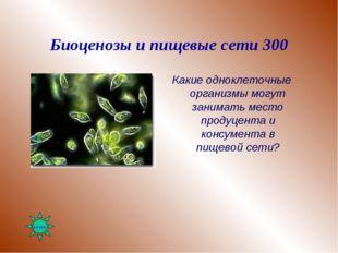 Биоценозы и пищевые сети 300 Какие одноклеточные организмы могут занимать мес