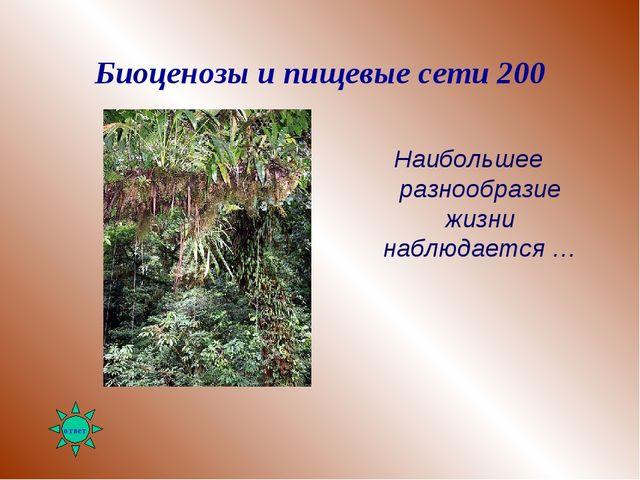 Биоценозы и пищевые сети 200 Наибольшее разнообразие жизни наблюдается …