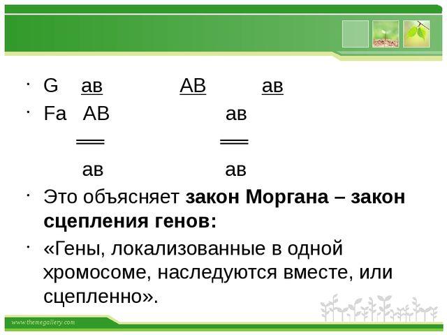 G ав АВ ав Fа АВ ав ══ ══ ав ав Это объясняет закон Моргана – закон сцеплени...