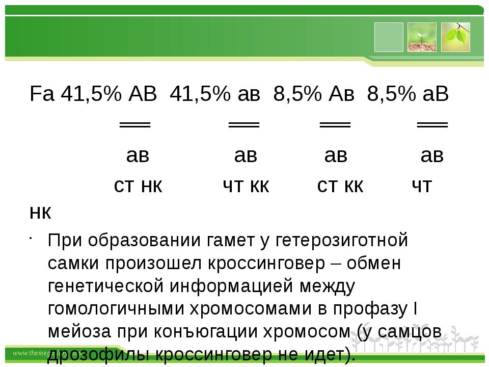 Fа 41,5% АВ 41,5% ав 8,5% Ав 8,5% аВ ══ ══ ══ ══ ав ав ав ав ст нк чт кк ст...
