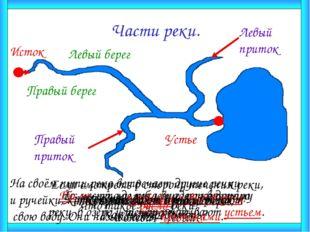 Части реки. Как называют начало реки? Исток Что такое устье реки? То место, г
