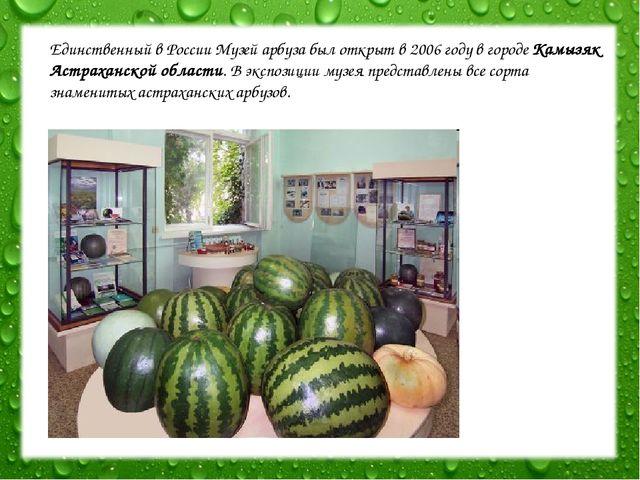 Единственный в России Музей арбуза был открыт в 2006 году в городе Камызяк Ас...