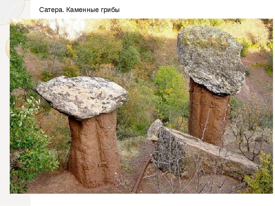 Сатера. Каменные грибы