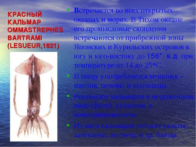 КРАСНЫЙ КАЛЬМАР OMMASTREPHES BARTRAMI (LESUEUR,1821) Встречается во всех откр...