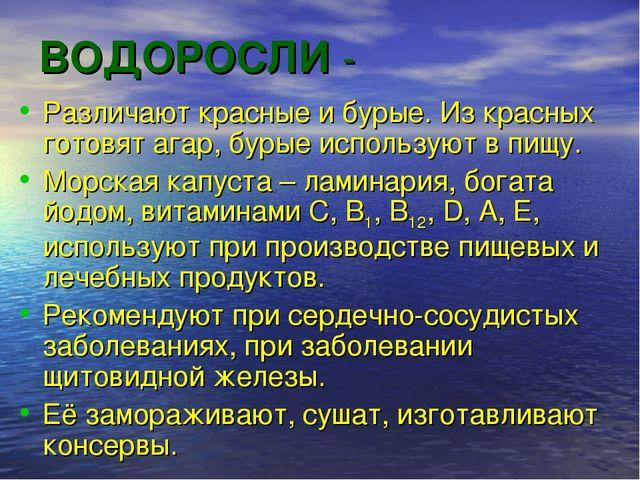 ВОДОРОСЛИ - Различают красные и бурые. Из красных готовят агар, бурые использ...