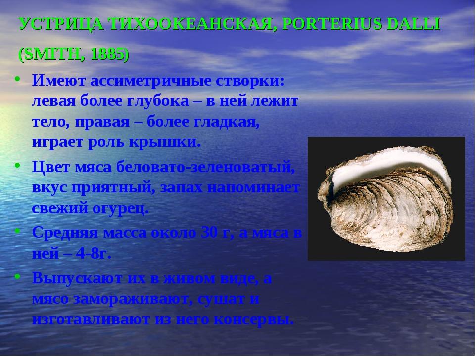 УСТРИЦА ТИХООКЕАНСКАЯ, PORTERIUS DALLI (SMITH, 1885) Имеют ассиметричные ство...