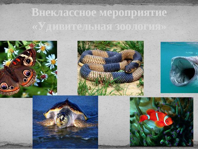 Внеклассное мероприятие «Удивительная зоология»