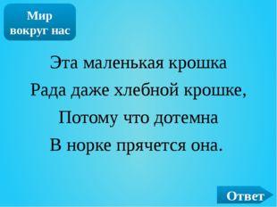 ОТВЕТ Киви Пингвин Страус