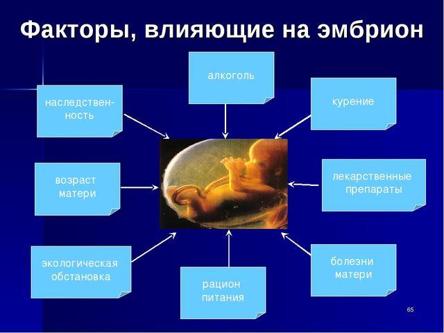 Факторы, влияющие на эмбрион алкоголь наследствен- ность возраст матери эколо...
