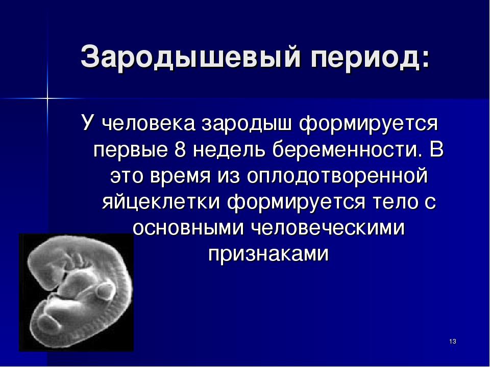 Зародышевый период: У человека зародыш формируется первые 8 недель беременнос...