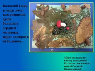 «Ёжик на полянке» Работу выполнили: Костоглотова Ксения с мамой Оксаной Шамил