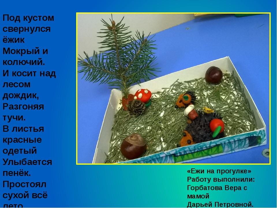 «Ежи на прогулке» Работу выполнили: Горбатова Вера с мамой Дарьей Петровной....