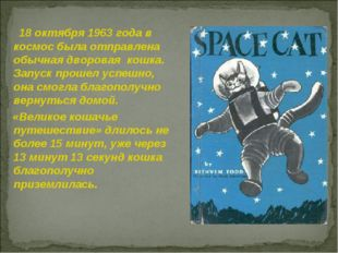 18 октября 1963 года в космос была отправлена обычная дворовая кошка. Запуск