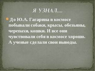 До Ю.А. Гагарина в космосе побывали собаки, крысы, обезьяны, черепахи, кошки.
