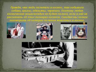 Прежде, чем люди полетели в космос, там побывали собаки, крысы, обезьяны, чер