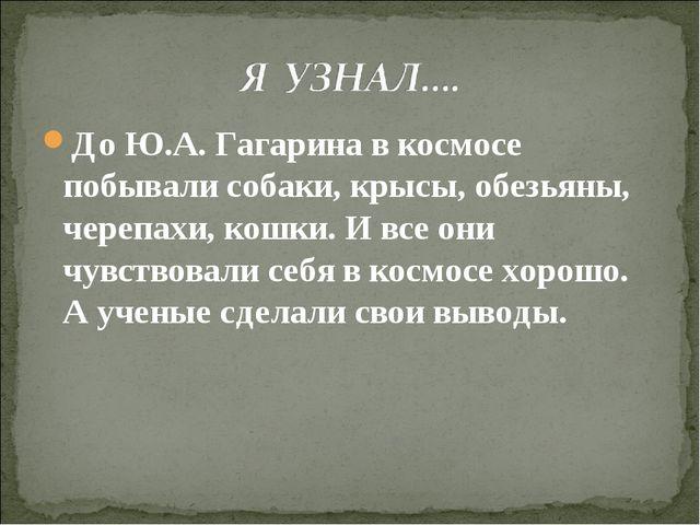 До Ю.А. Гагарина в космосе побывали собаки, крысы, обезьяны, черепахи, кошки....