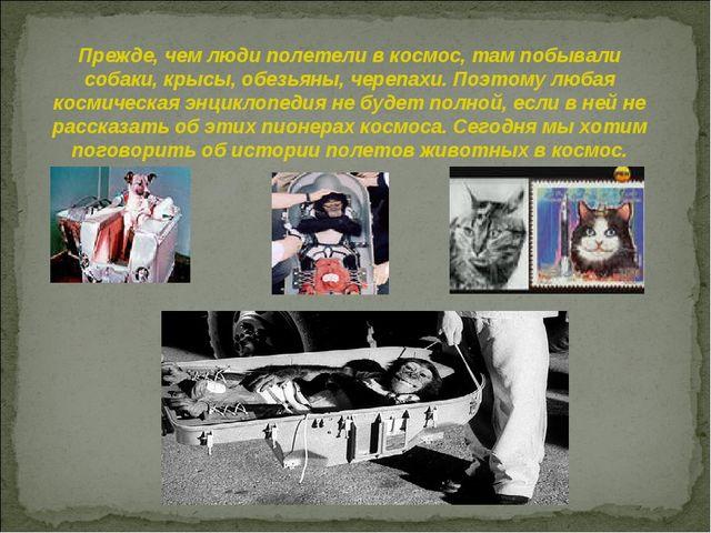 Прежде, чем люди полетели в космос, там побывали собаки, крысы, обезьяны, чер...
