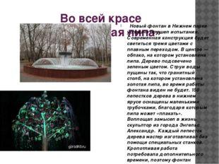 Во всей красе «Плакучая липа» Новый фонтан в Нижнем парке успешно прошел испы