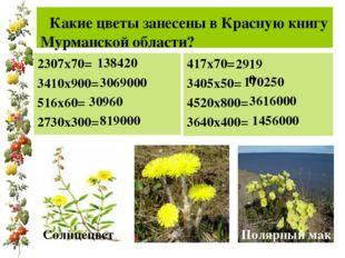 Какие цветы занесены в Красную книгу Мурманской области? 2307х70= 3410х900=