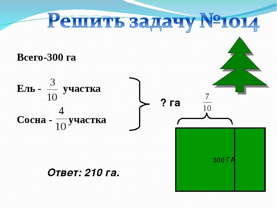 Всего-300 га Ель - участка Сосна - участка ? га Ответ: 210 га. 300 ГА