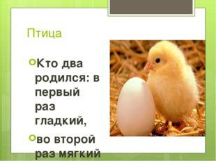 Птица Кто два родился: в первый раз гладкий, во второй раз мягкий