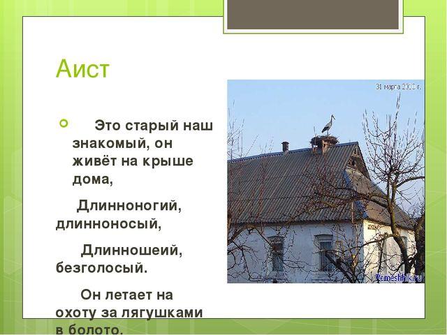 Аист Это старый наш знакомый, он живёт на крыше дома, Длинноногий, длиннонос...