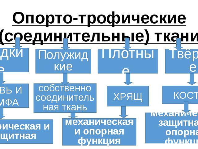 Опорто-трофические (соединительные) ткани Жидкие Полужидкие КРОВЬ И ЛИМФА Пло...