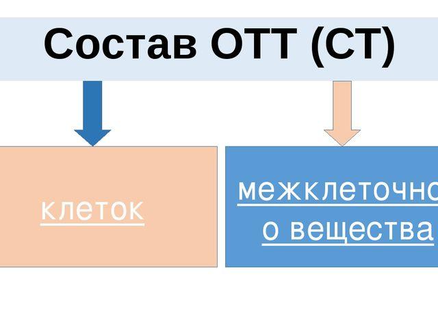 Состав ОТТ (СТ) клеток межклеточного вещества