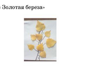 « Золотая береза»