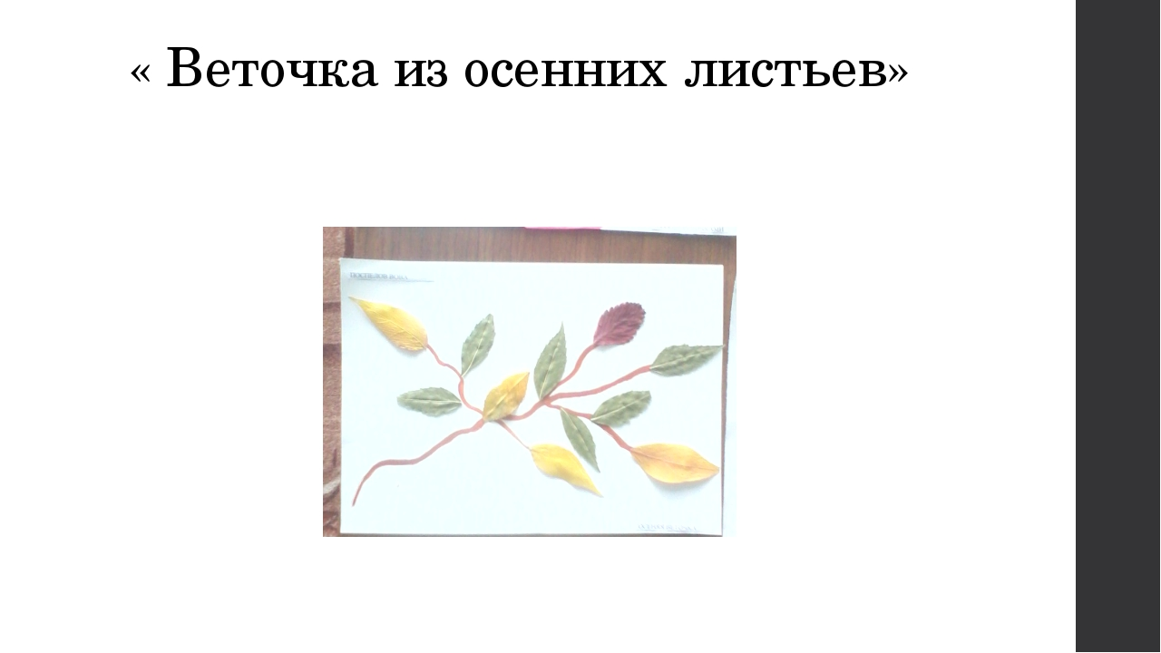 « Веточка из осенних листьев»