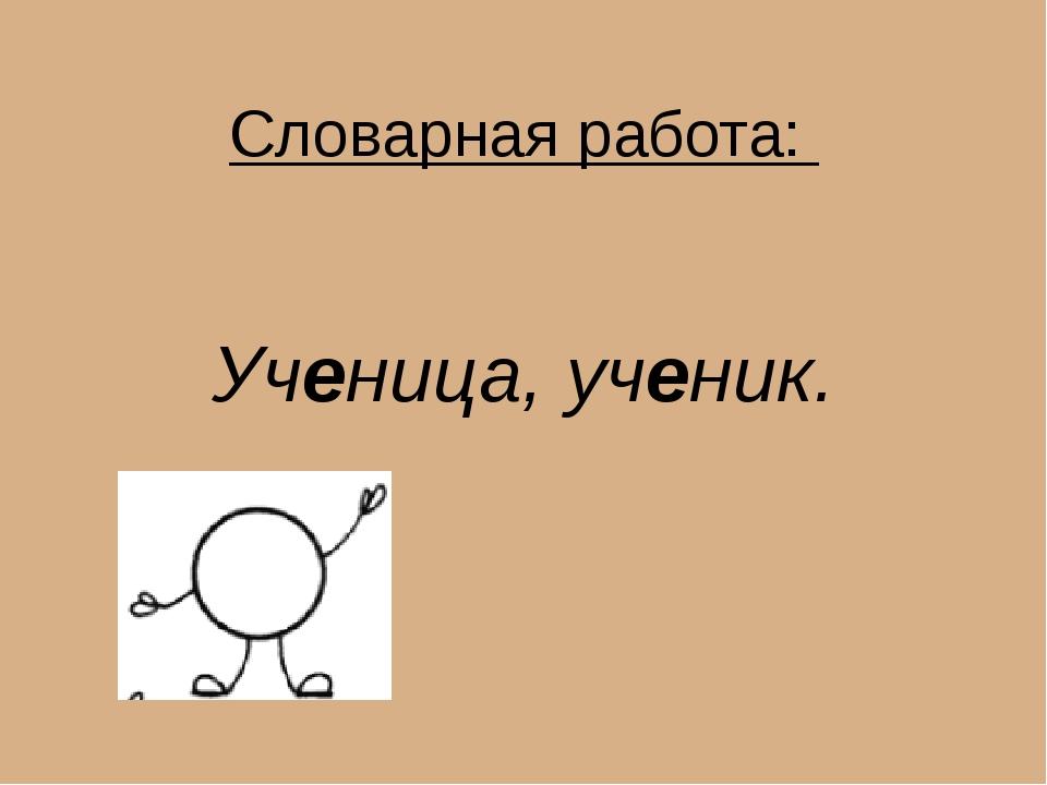 Словарная работа: Ученица, ученик.