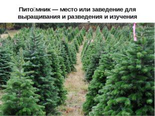 Пито́мник— место или заведение для выращивания и разведения и изучения расте