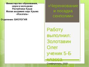 «Черенкование и посадка сенполии» Работу выполнил: Золотавин Олег ученик 5-Б