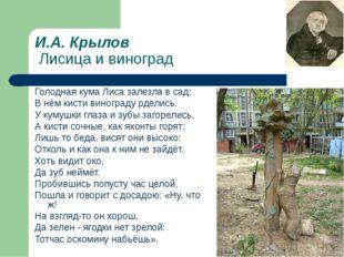 И.А. Крылов Лисица и виноград Голодная кума Лиса залезла в сад; В нём кисти в