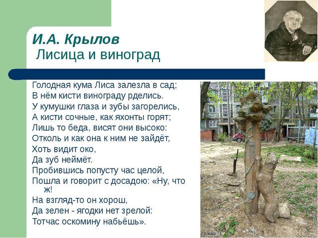 И.А. Крылов Лисица и виноград Голодная кума Лиса залезла в сад; В нём кисти в...
