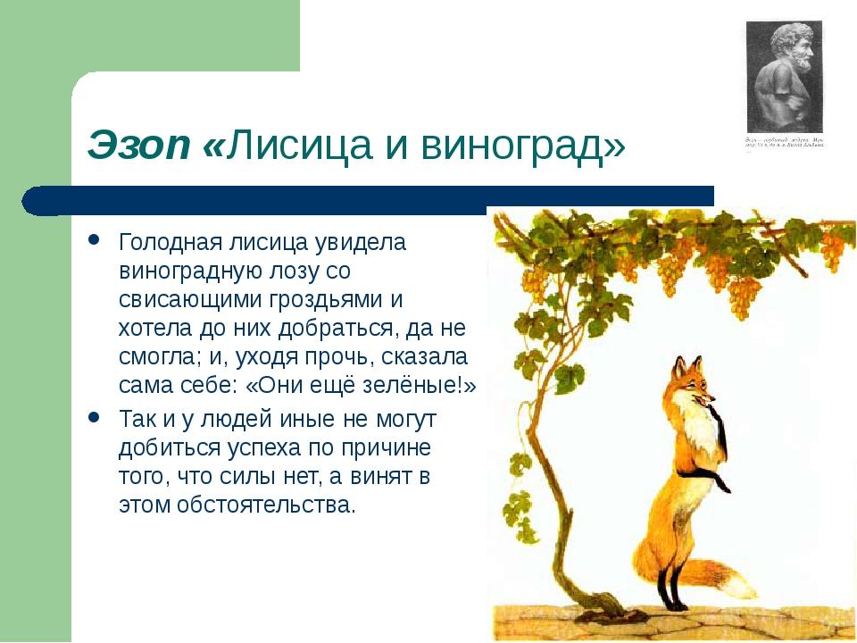 Эзоп «Лисица и виноград» Голодная лисица увидела виноградную лозу со свисающи...